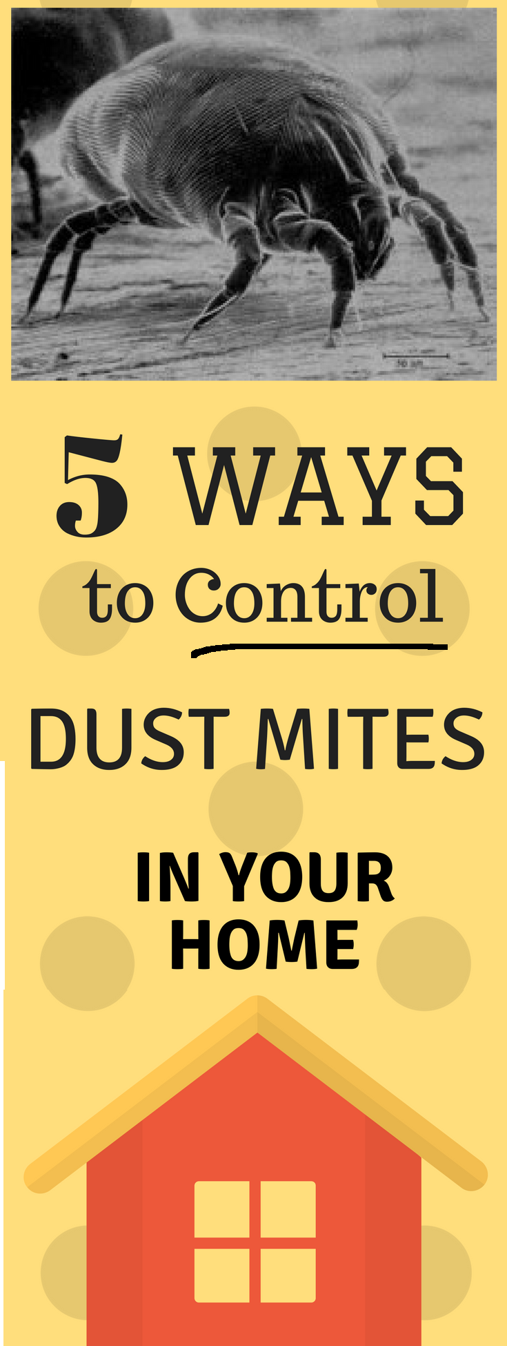 Use duct cleaning to your advantage control dust mites