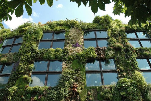 If you have too little space for a lot, starting a vertical garden - diseo de jardines urbanos