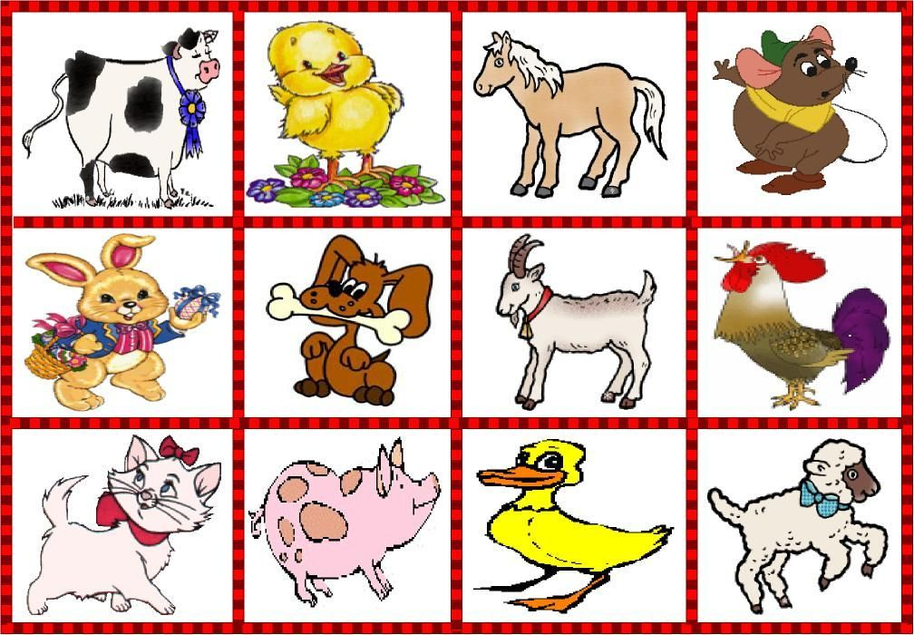 animales domesticos - Buscar con Google | imagenes | Pinterest ...