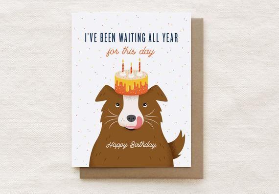 Funny Dog Birthday Card Birthday Card For Brother Boyfriend For