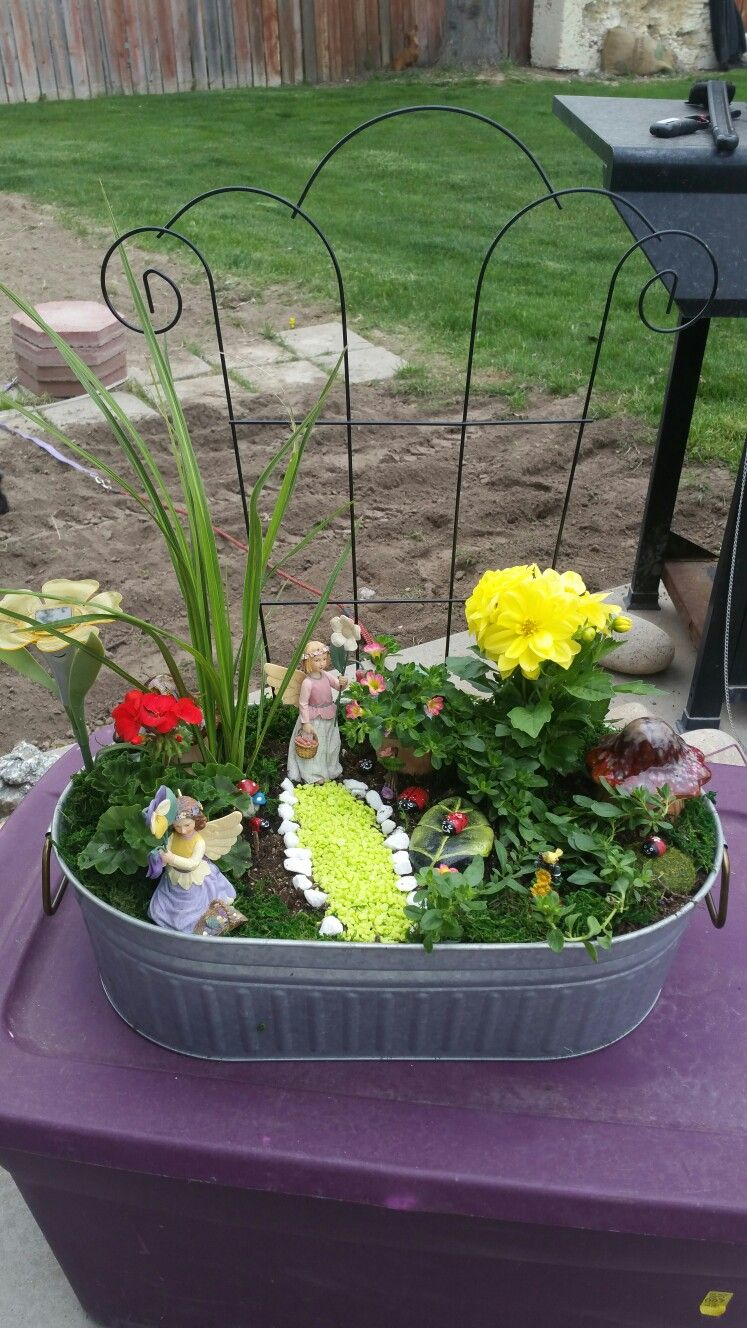 My first fairy garden with live plants. By: Evelyn Bowman. | Fairy ...