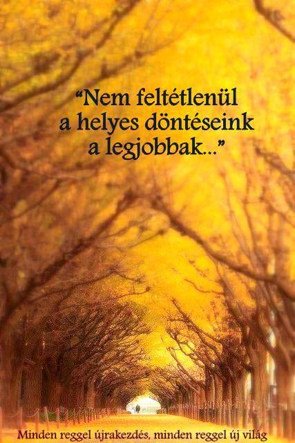 újrakezdés idézetek bölcsességek döntéseink   Happy life, Qoutes, Life quotes