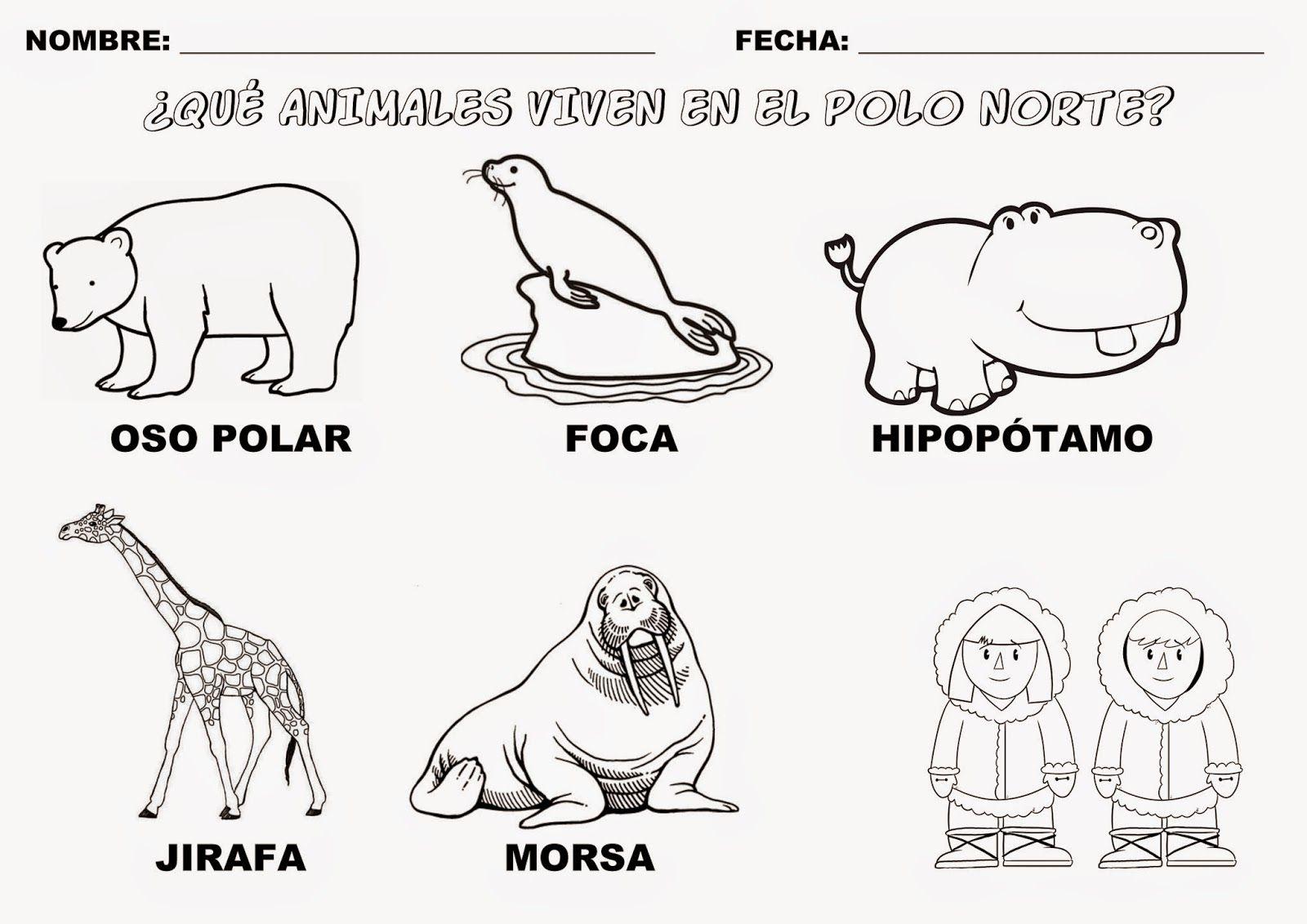Trabajando con personitas: Los Animales que viven en el Polo Norte ...