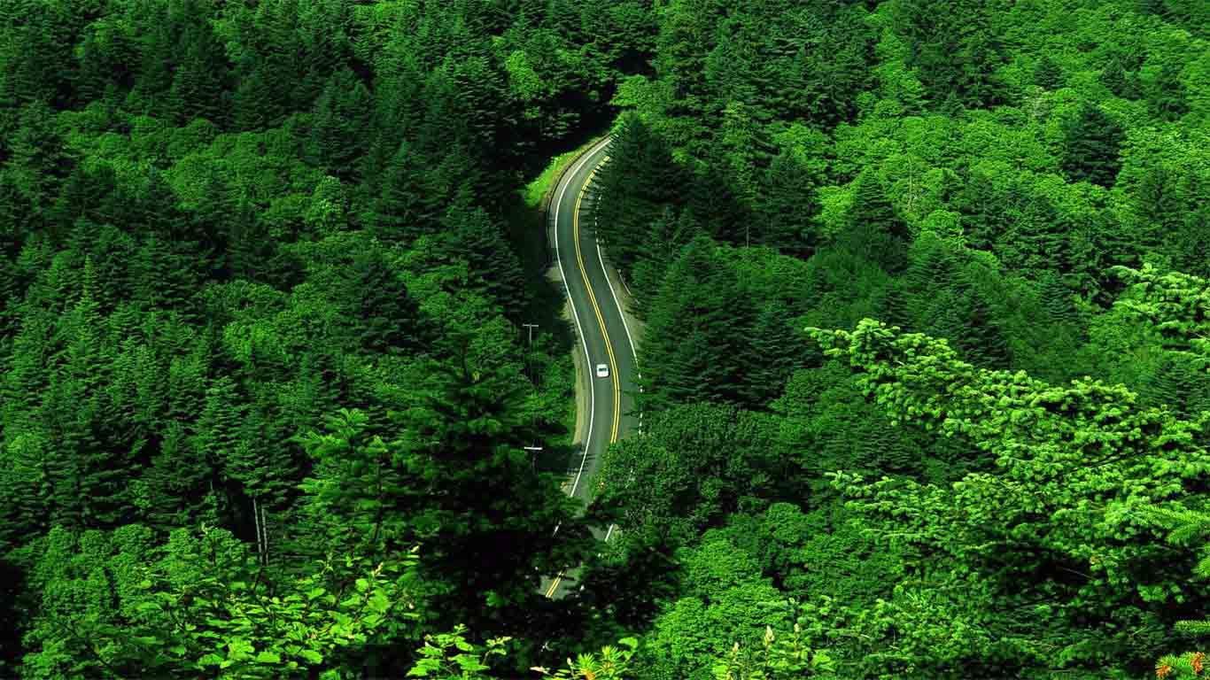 Nature Greenery Latest Hd Wallpaper Funtweak Com Green Scenery Beautiful Landscape Wallpaper Scenery Wallpaper