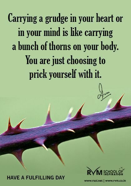 Daily Inspirational Thoughts Pleasing Pinrvm School Of Inspiration On Daily Inspirations  Pinterest