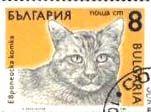 Gatos en los sellos