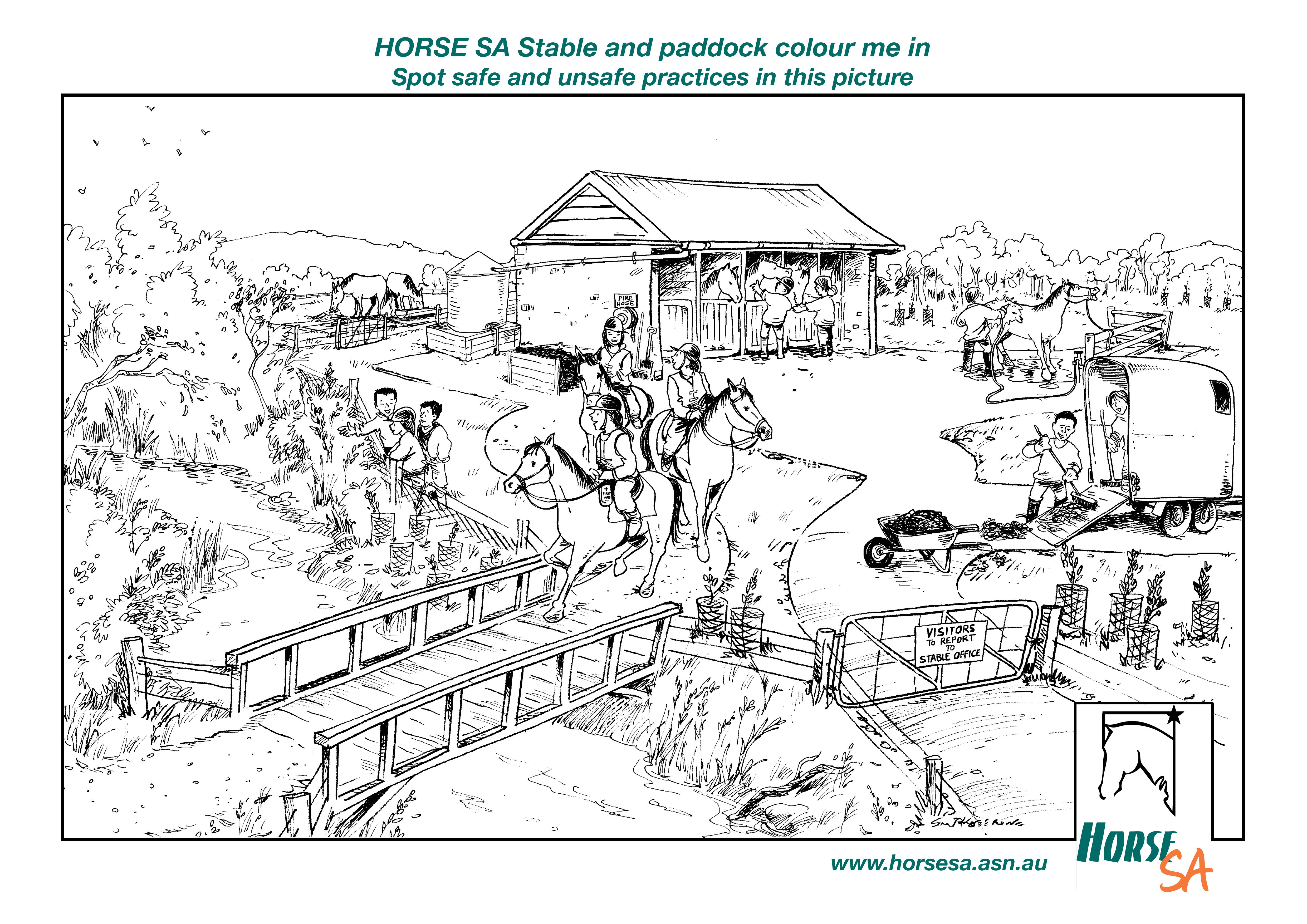 Download this colour in http://www.horsesa.asn.au/wp-content/uploads/2013/08/Colour-in-picture.jpg