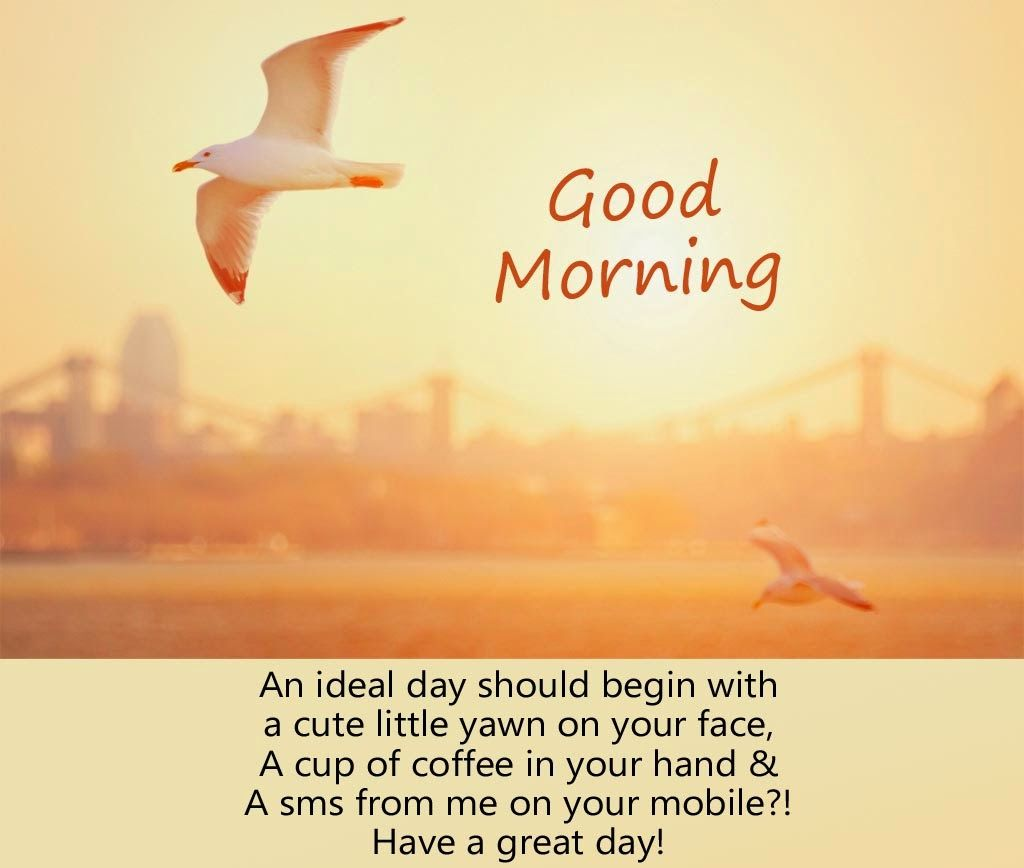 Super nice Good morning quotes for someone special
