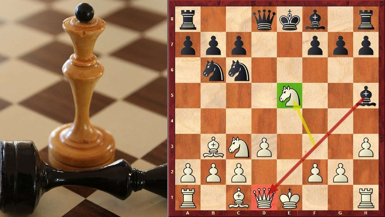 A Shocking Queen Sacrifice On Move 9 In Scandinavian Defense Chess Board Chess Game Sacrifice
