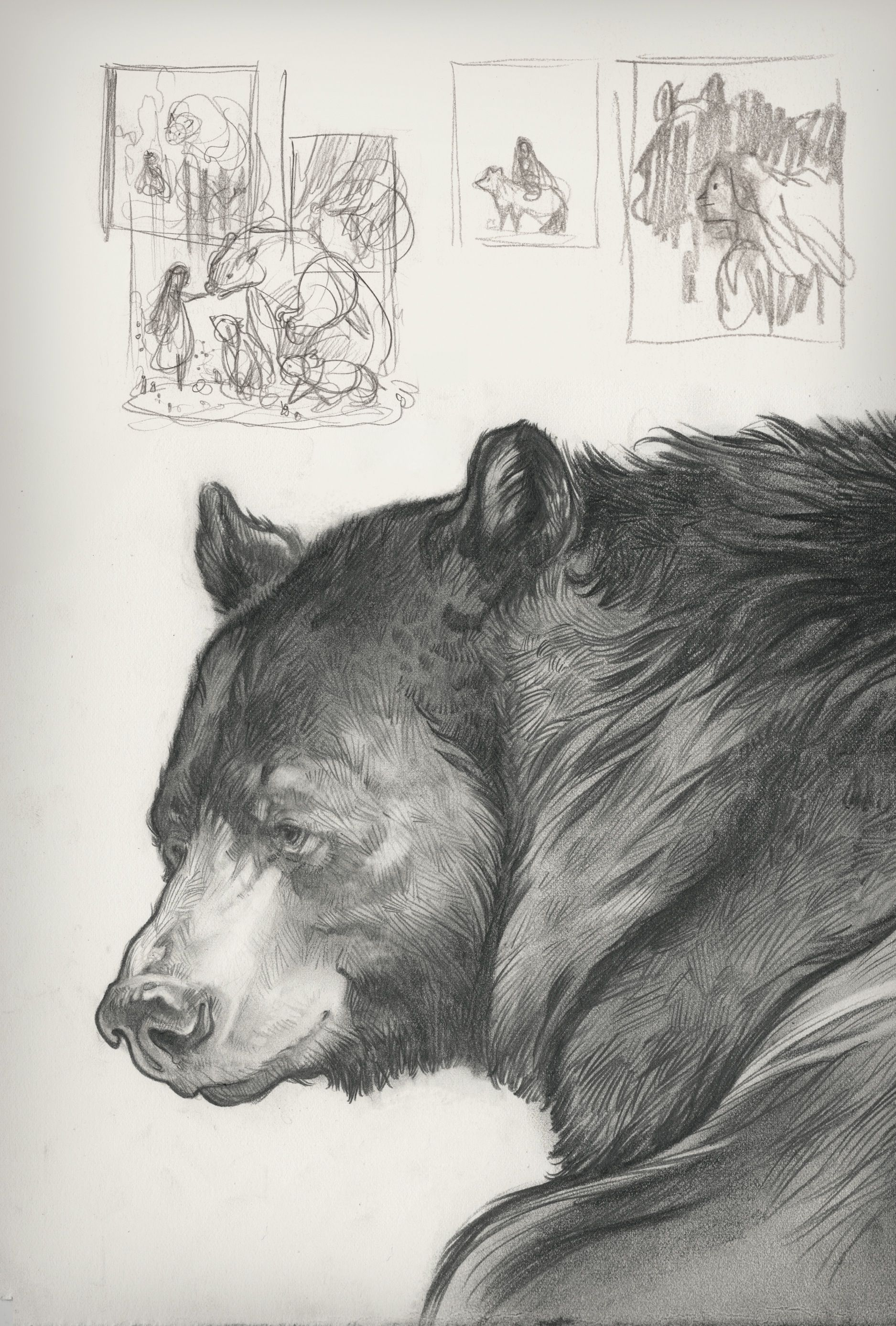 Bear sketch by Cory Godbey, from \