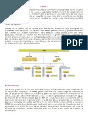 Lipidos Biologia Molecular Lipidos Y Estudiantes De
