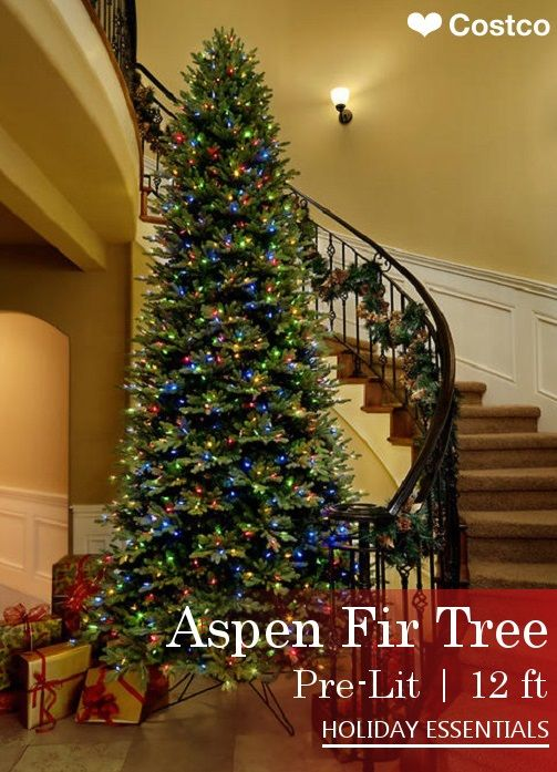 the aspen fir style of christmas tree offers a wider fuller option for your home