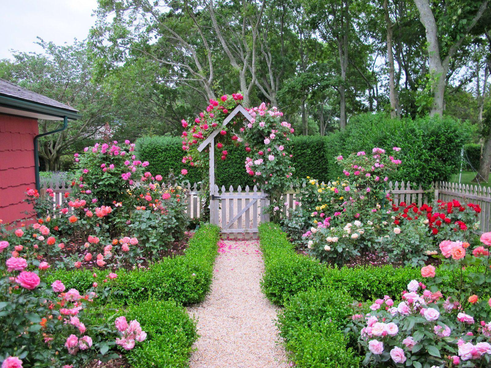 Artistic Cottage Garden Roses on Garden Decor | To ME | Pinterest