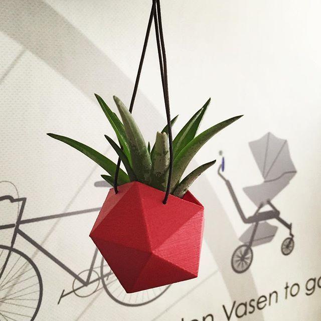Neuer Prototyp unserer #vasen to go aus dem #3ddrucker #hanginggardens #bicidiamonds #homedecoration #living #gardening #mobilegarden #madeinhannover for #designlovers - Besucht uns auf dem #designmarkt #designgipfelbielefeld und #kreativmarkt #deineeigenarthannover !