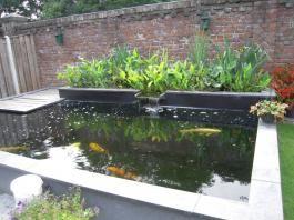 Plantenfilter google zoeken vijvers pond garden en koi for Tuinvijvers aanleggen