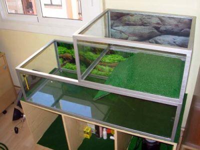 Gu a para tortugueras muy completa acuario pinterest for Peceras para tortugas