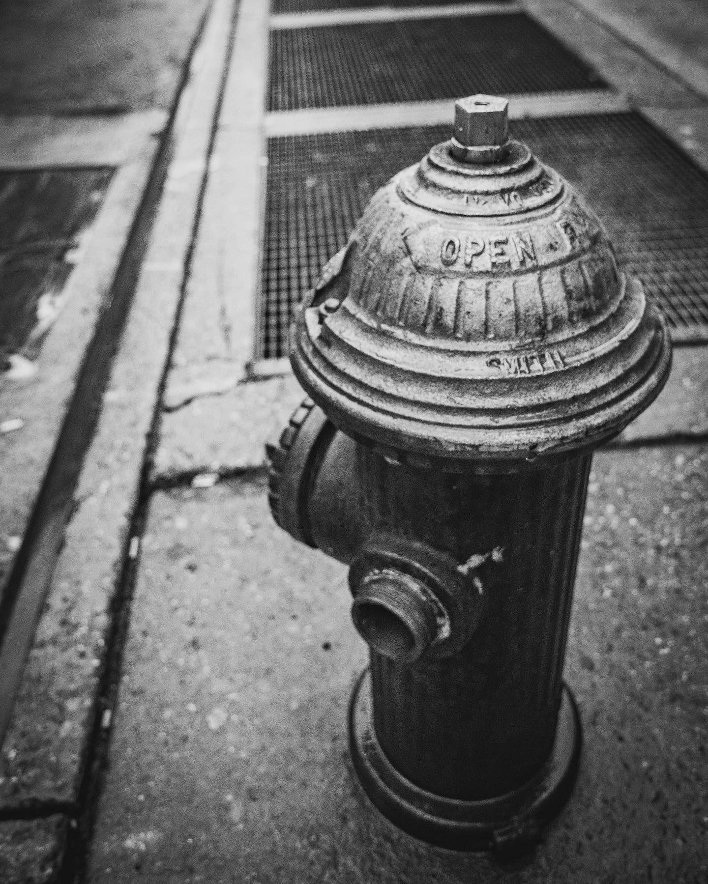 Fire Hydrant  #onichie #osaka #japan #osakajapan #大阪 #日本 #オニッチ #おにっち #fromosaka #fromjapan #omg #onichiemusicgarage #ツァイスBatisで撮りたい #aestheticsjapan #shotonlexar #newyork #newyorkcity #nyc #firehydrant #消火栓