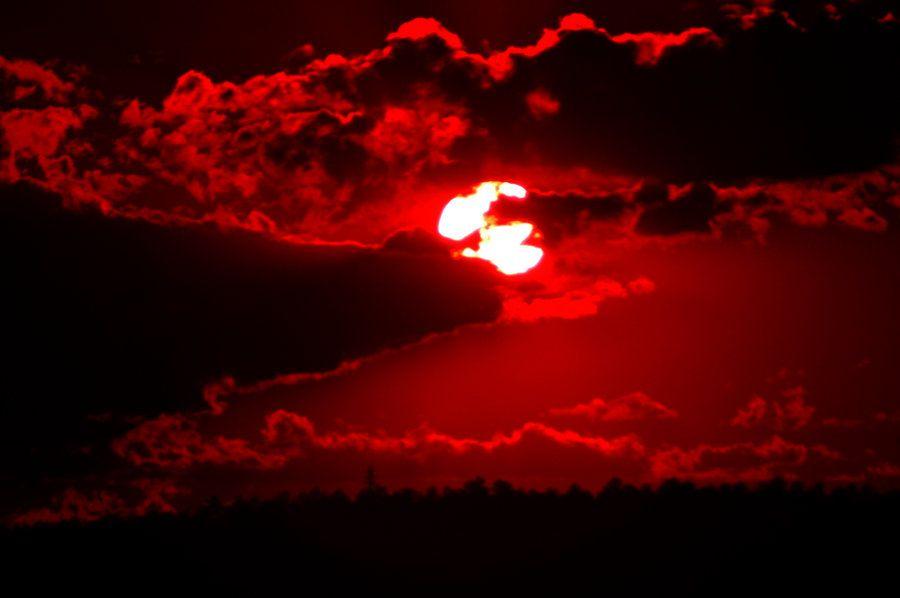 red moon 2019 phoenix - photo #48