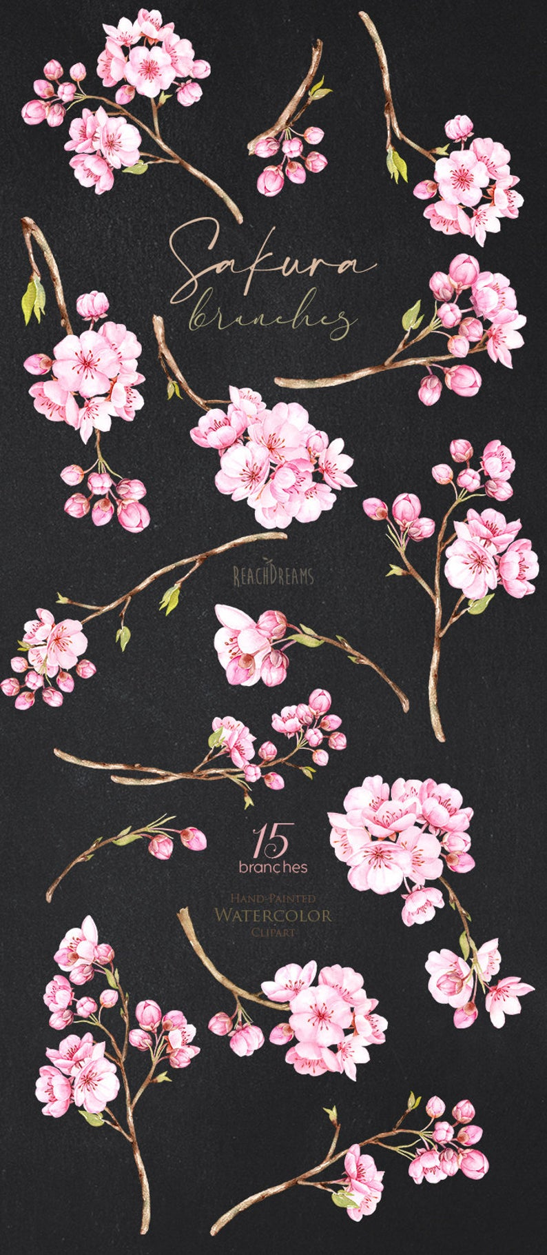 Sakura Branches Watercolor Floral Clipart Cherry Blossom Etsy In 2020 Floral Watercolor Cherry Blossom Art Japanese Letters Tattoo