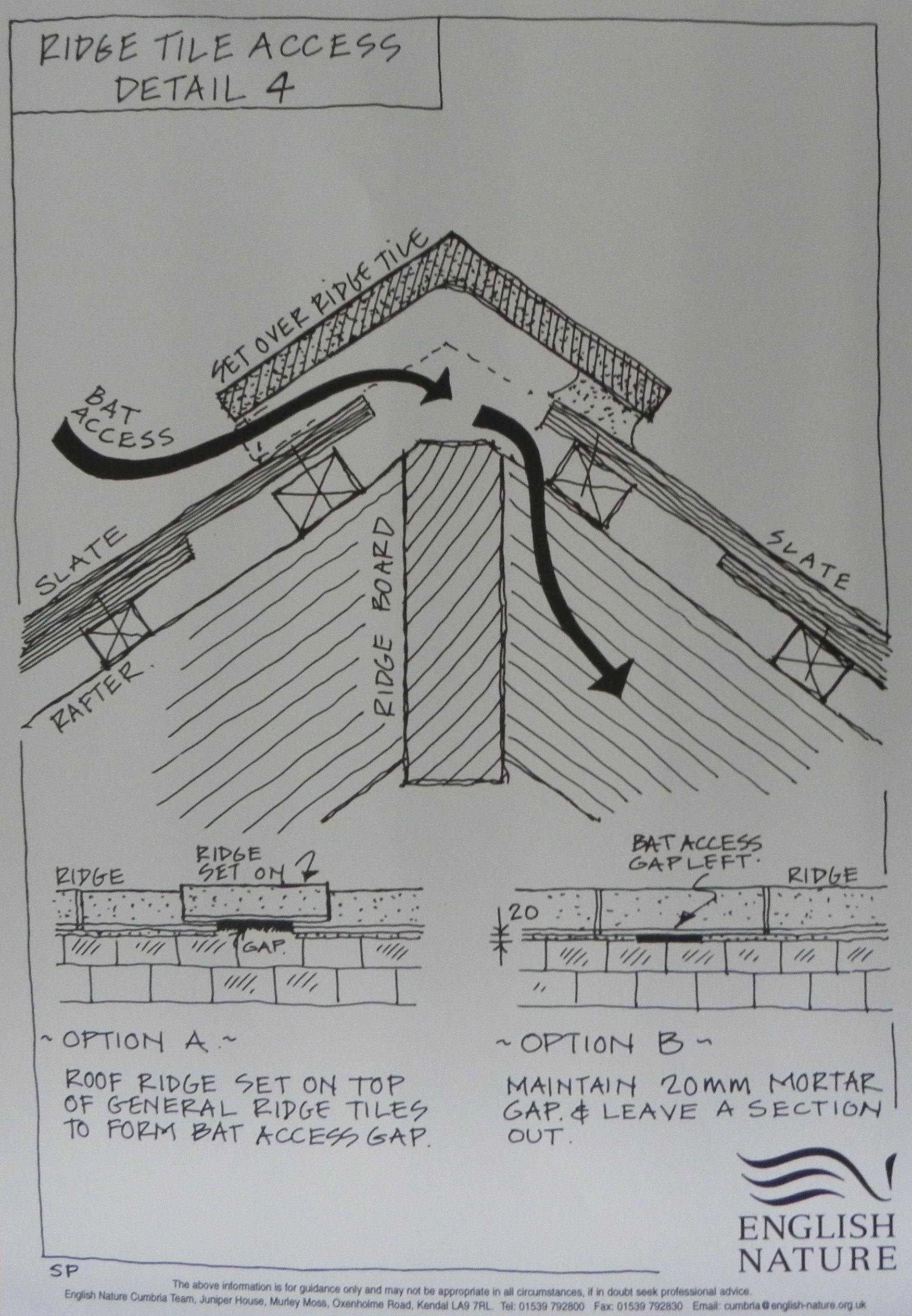 Ridge Tile Access Information Sheet