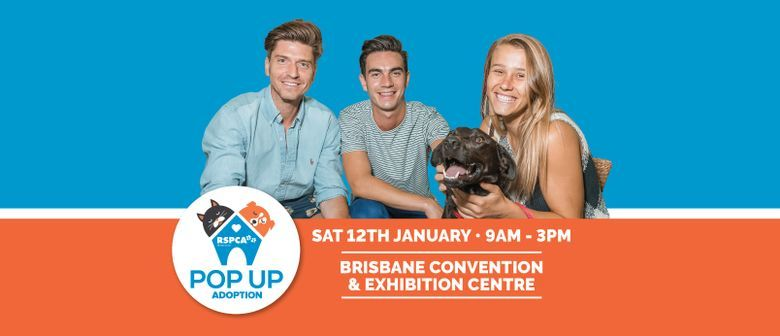 RSPCA Queensland Pop Up Adoption 2019 January 12