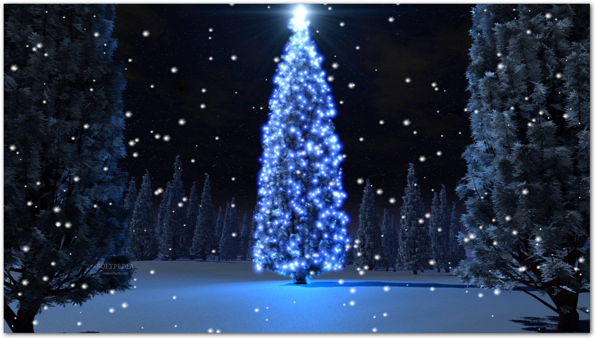 Christmas Countdown Desktop Wallpaper Quoteko Com Holiday Tree Christmas Lights Christmas Countdown