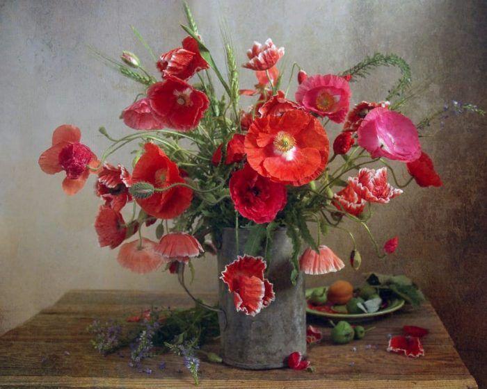 цветы на фото – 14 | Цветочные картины, Маки, Природный ...