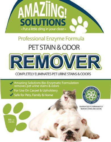 Best Carpet Cat Dog Pet Urine Odor Stain Remover Natural Carpet