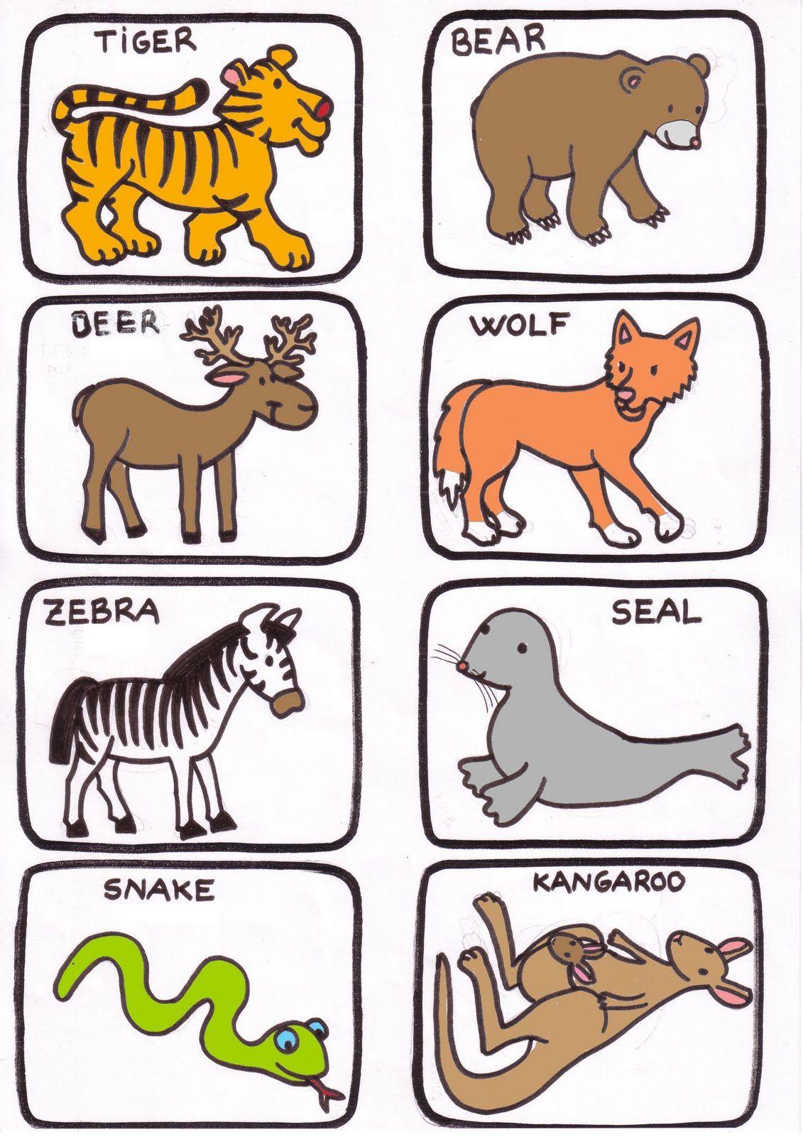 Animales Salvajes En Ingles Imagui Lección De Inglés Fichas De