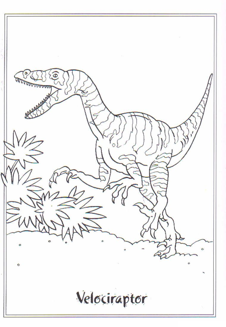 Kids N Fun Coloring Page Dinosaurs 2 Velociraptor Coloring Pages