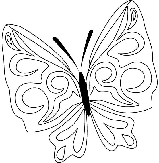 Schmetterling Ausmalbilder Schmetterlinge Ausmalen Coloring