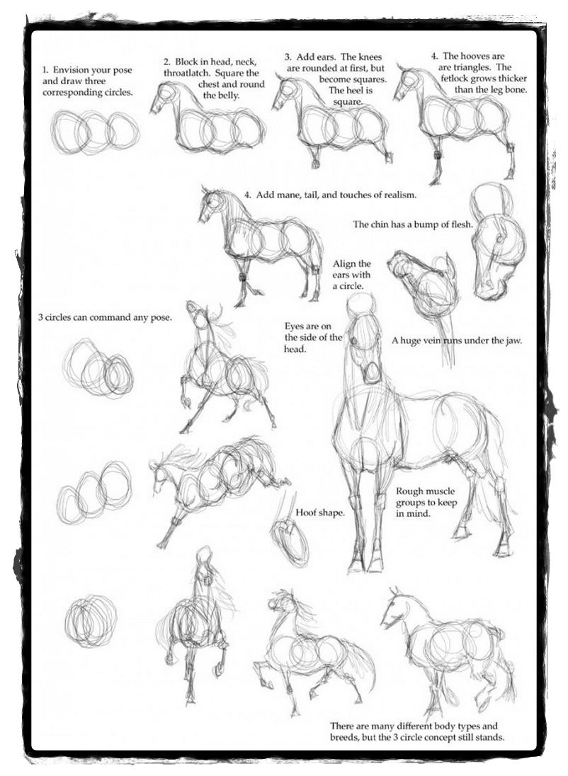 25 belos desenhos de animais para a sua inspiração 4 | Aulas de ...