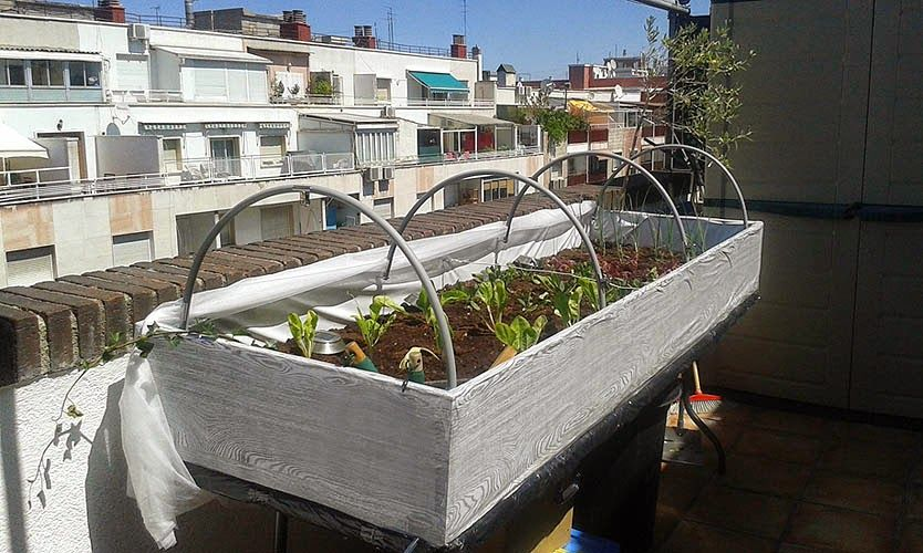 Mesa De Cultivo Terminada Mi Huerto Urbano Gardening