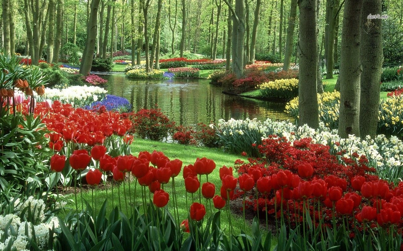 Image Result For جمال الطبيعة في العالم Beautiful Gardens Most Beautiful Gardens Beautiful Flowers Garden