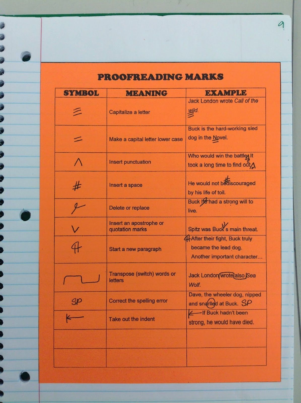 First Days Of Interactive Notebooks