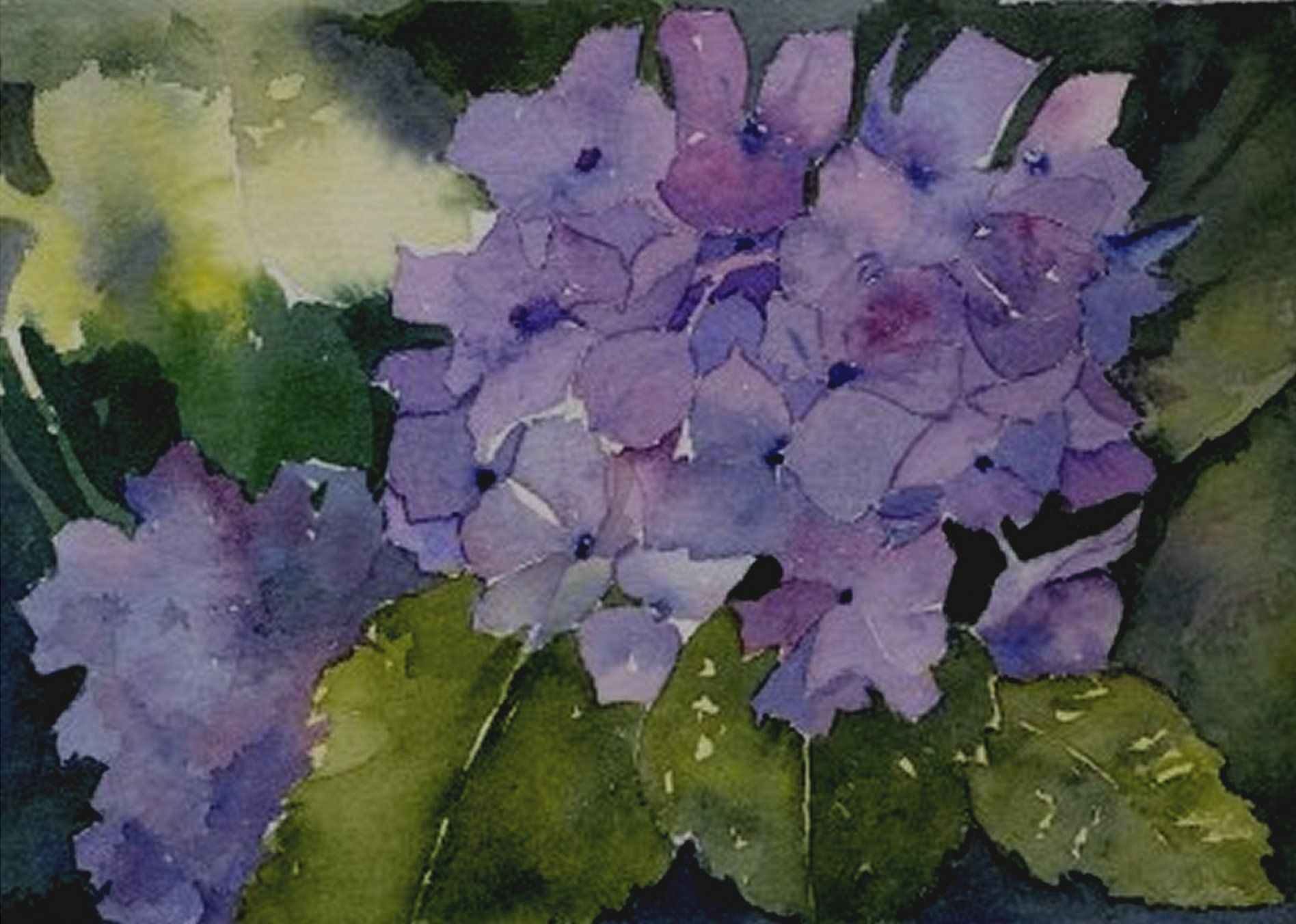 Floral Watercolor Paintings - Bing Images
