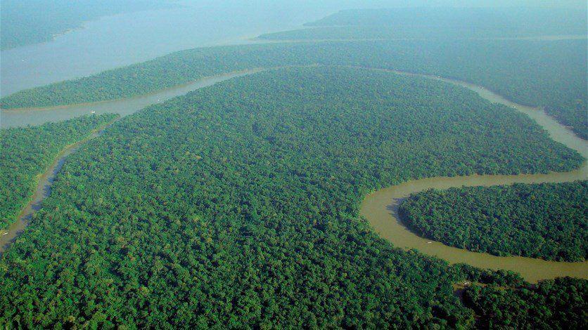 النيران تلتهم غابات الأمازون والدخان المتصاعد من رئة الأرض يحجب أشعة الشمس في البرازيل صور Amazon Forest Rainforest Earth