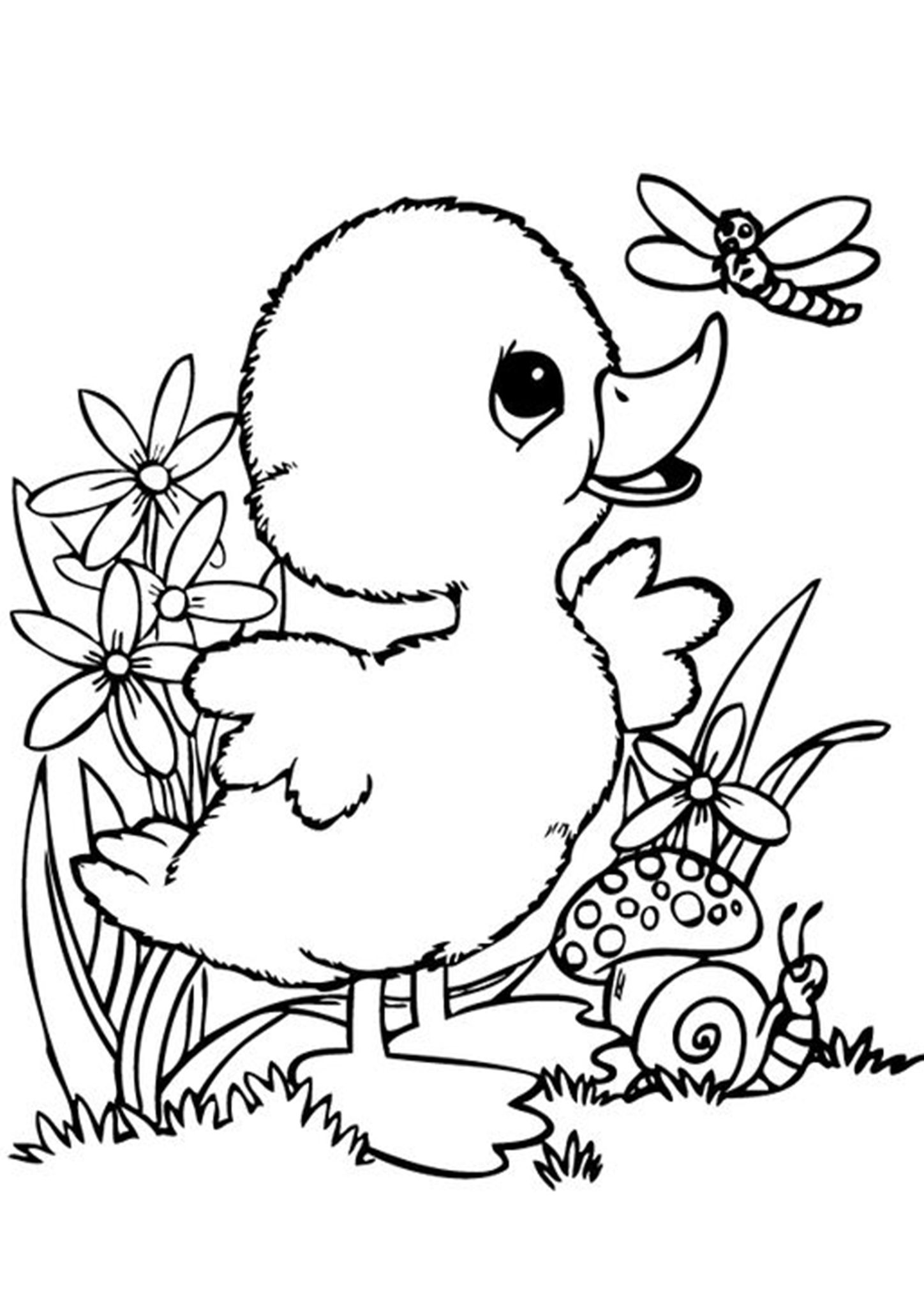 Free Easy To Print Duck Coloring Pages Bird Coloring Pages Animal Coloring Pages Unicorn Coloring Pages