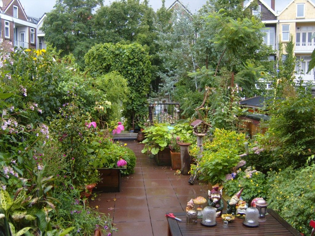 dakterras delfshaven rotterdam verborgen tuinen roof