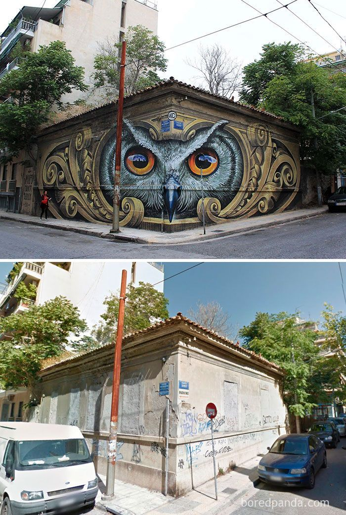 Pin By Booguy On Wall Paintings Pinterest Street Art Graffiti - Clever free bird see graffiti spotted in chicago leads to a creative surprise
