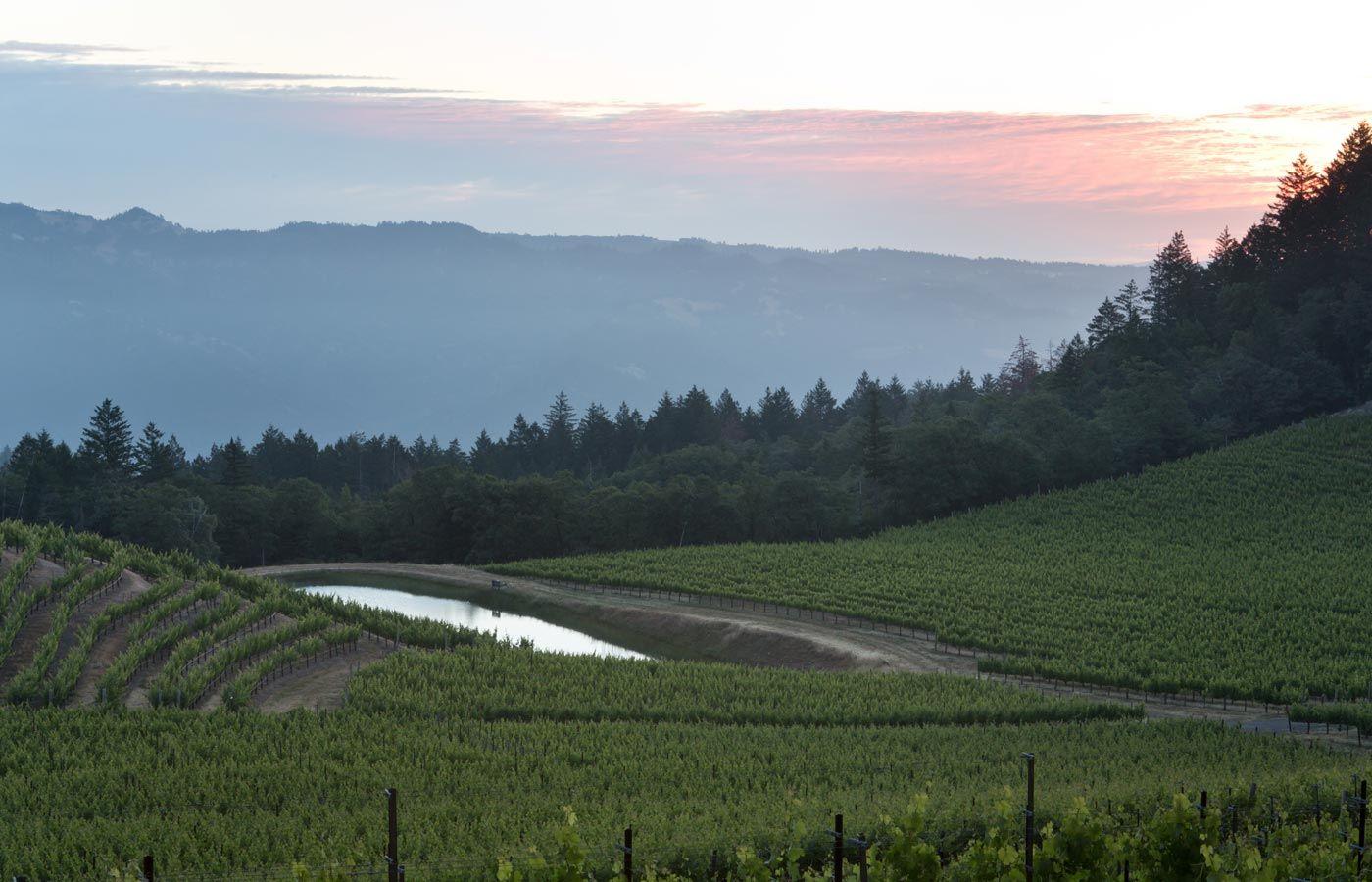 Pride Mountain Vineyards - Home
