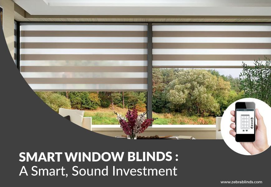 Smart Window Covering Ideas A Smart Sound Investment Window Coverings Windows Blinds For Windows