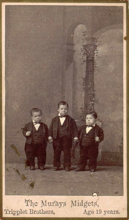 The Murays Midgets, tripplet brothers, age 19 years - 1880s