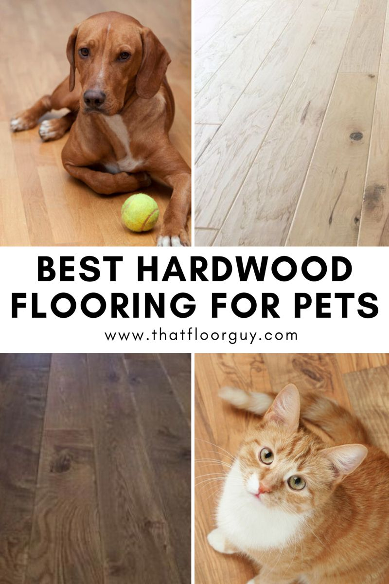 Wood Floors For Pets In 2020 Hardwood Types Of