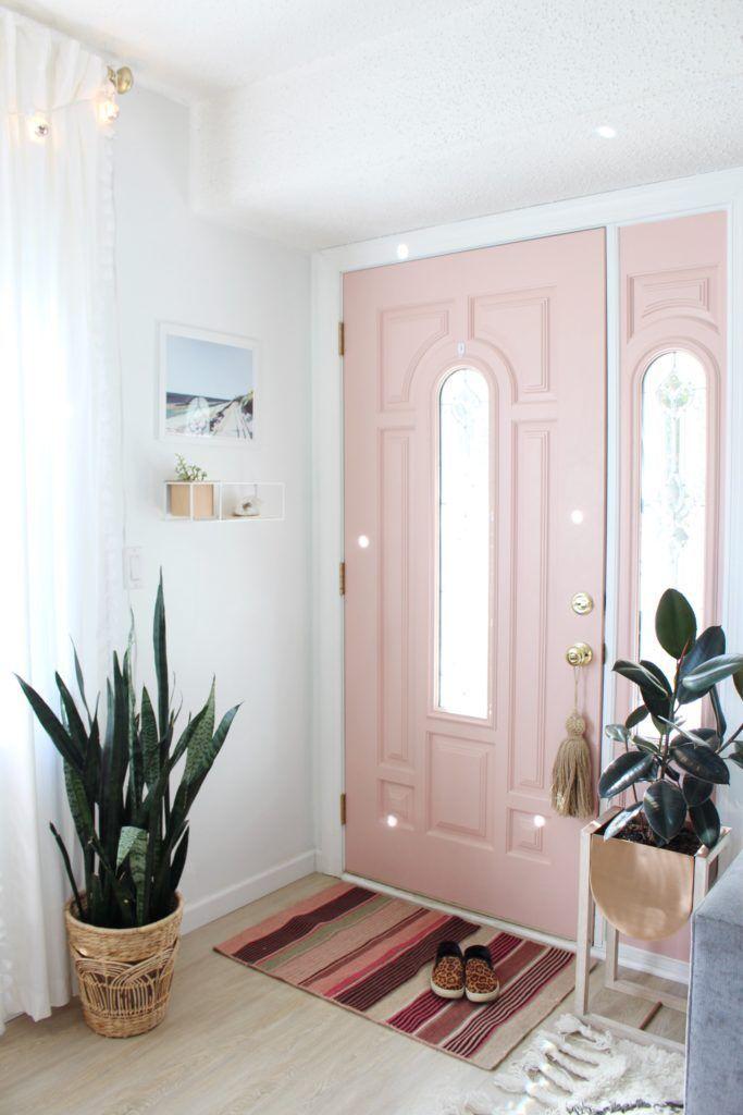 Light Pink Blush Front Door Snake Plant In Basket