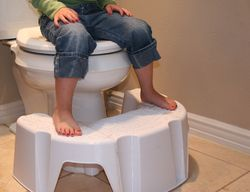 Outstanding Little Looster Potty Step Stool Looks Like A Good Idea Gmtry Best Dining Table And Chair Ideas Images Gmtryco