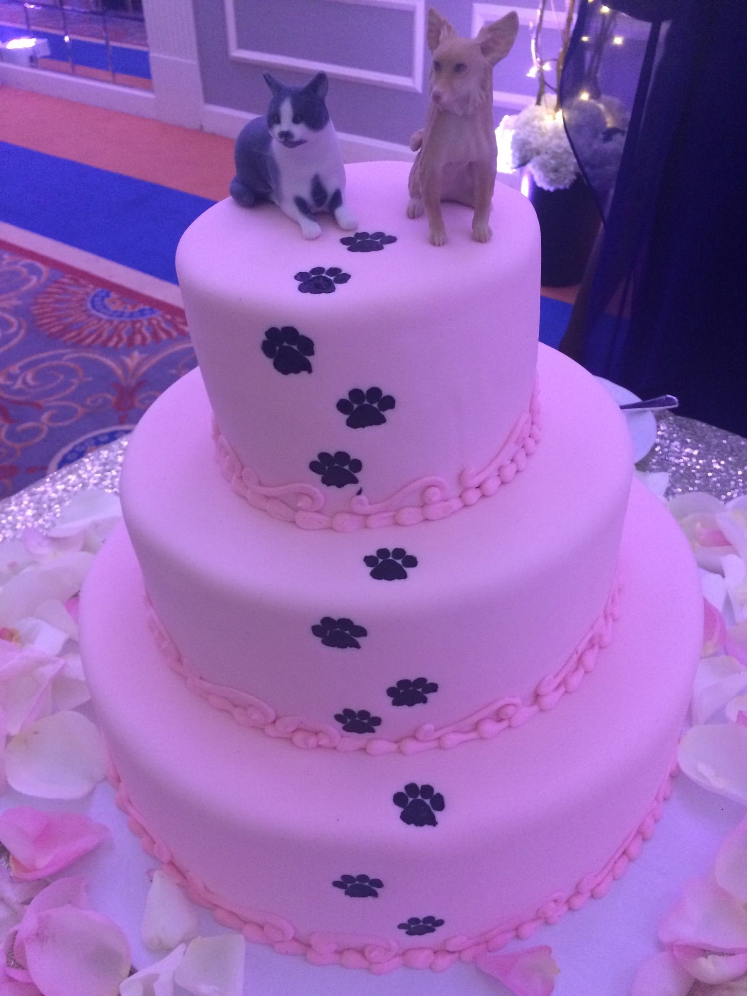 My cake complete with toppers custom made to look like our cat and