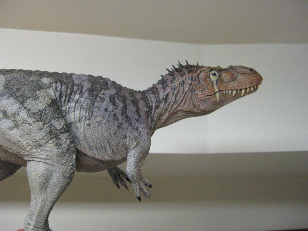 クレタセウス torvosaurus tanneri model