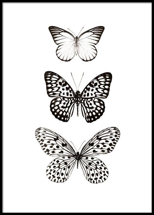 zwart wit poster met vlinders