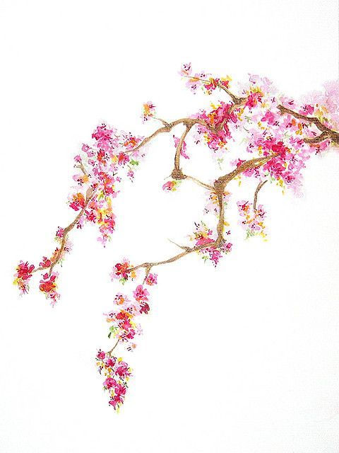 Watercolor Cherry Blossom Flower Painting flower